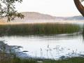 Morning-mist-on-Cabarita-Lake