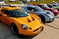 Lotus-Evolution