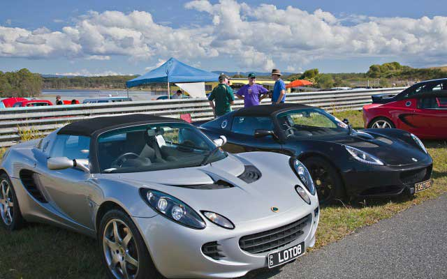 Part-of-Elise-line-up