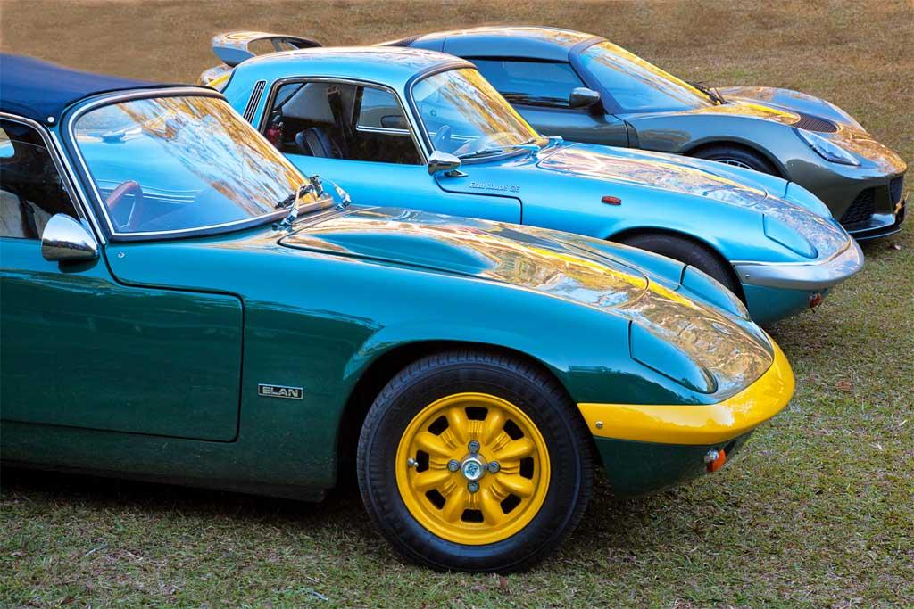 Trio-of-Lotus