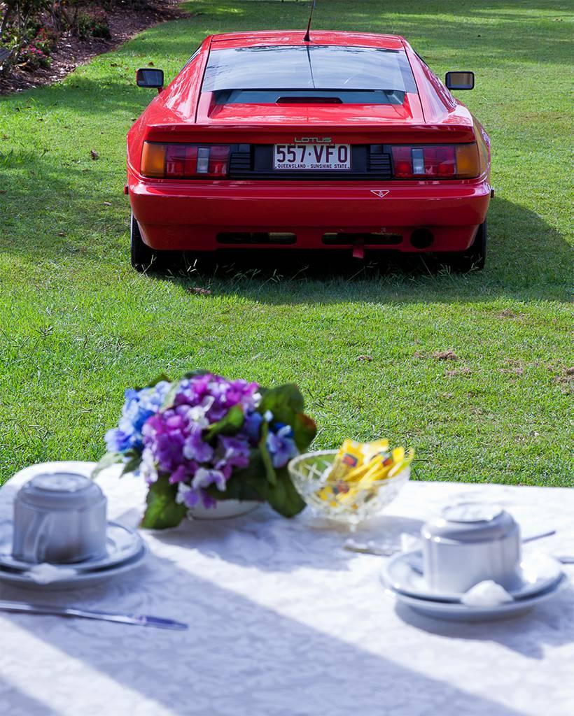 Lotus & devonshire tea