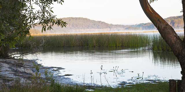 Morning-mist-on-Cabarita-Lake