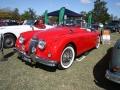 Jaguar-Red