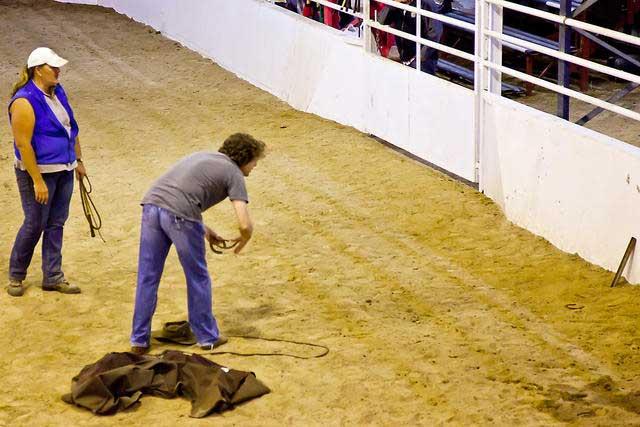 Horseshoe-throwing-challenge