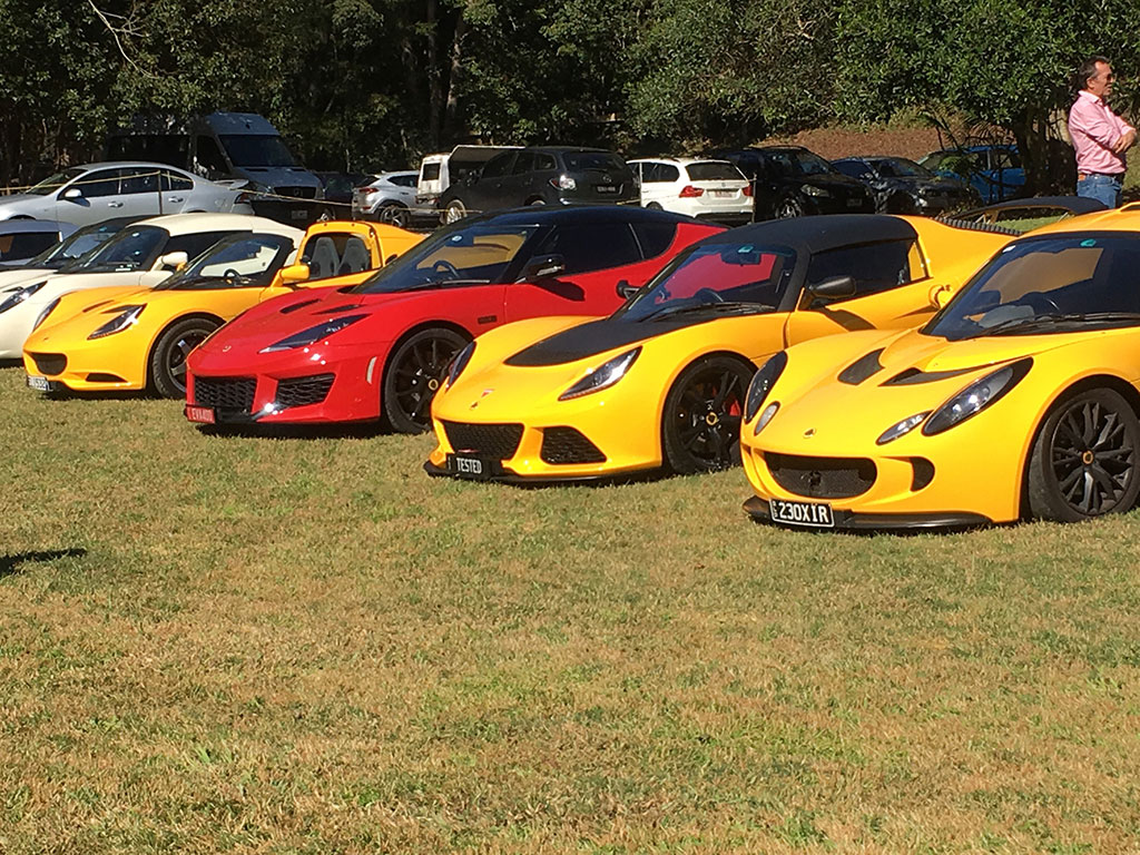 Most Lotus look good in Yellow