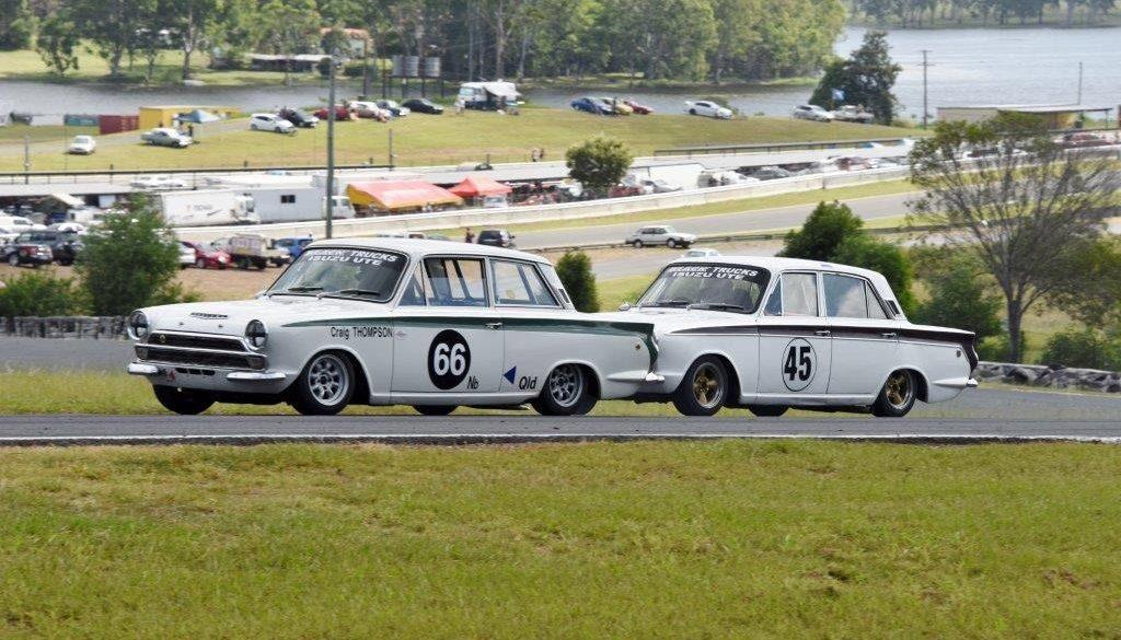 Tight-Lotus-Cortinas